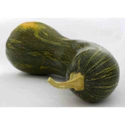 La calabaza, hortaliza rica en sales minerales