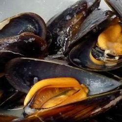 Tercera Fiesta Gastronómica del Mejillón en A Guarda (Pontevedra)