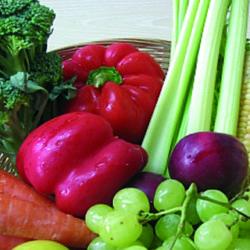 Educación nutricional, reducción de la ingesta y aumento del gasto energético, ecuación contra la obesidad