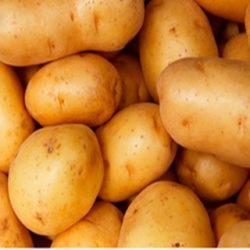 A Festa da Patata (La Fiesta de la Patata)