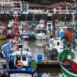 Barcos vascos y cántabros logran un sello sostenible por la pesca de sardina