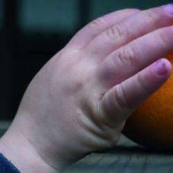¿Por qué tu hijo devora la fruta y el mío no? No, no es por suerte