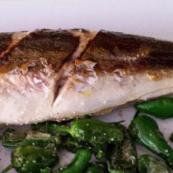 El chicharro o jurel, pescado humilde y sabroso