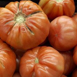 El tomate rosa de Barbastro