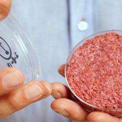Carne sintética en 2025: ¿la salvación del planeta?