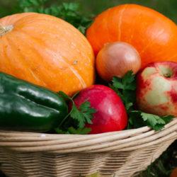 ¿Hay que cambiar nuestra alimentación con la llegada del otoño?
