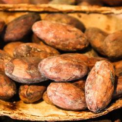 El cacao, sabroso y energético