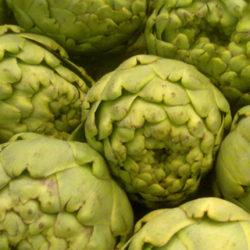 La alcachofa, verdura de invierno muy saludable