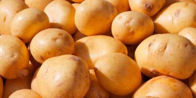 patatas-nuevas