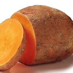 El boniato, la patata dulce